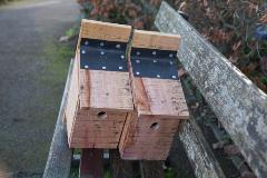 Bird boxes made from felled timber in the Jellicoe Water Gardens at our Wildlife Day